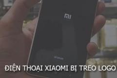 Điện thoại Xiaomi bị đơ màn hình, treo logo thì giải quyết thế nào?