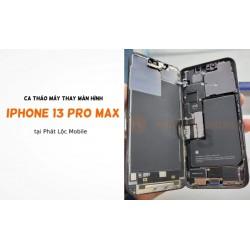 Thay Màn Hình iPhone 13 Pro/ 13 Pro Max